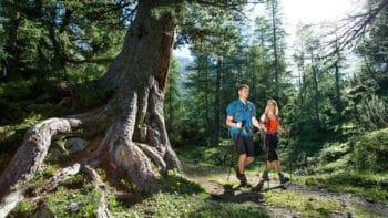 Wandern in der Natur rund um Leutasch
